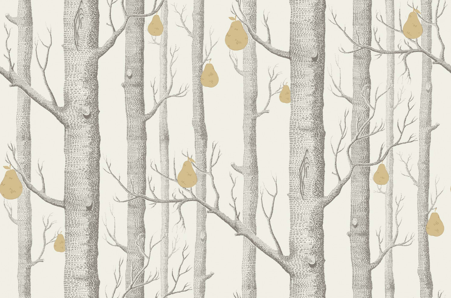 Cole And Son Woods cole & son - contemporary restyled - woods & pears 95/5032