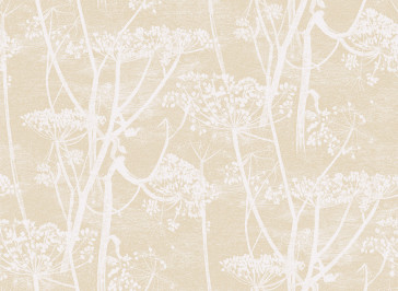 Cole & Son - New Contemporary - Cow Parsley 66/7049