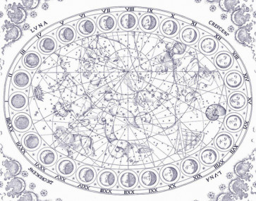 Pierre Frey - Constellation - FP528001 Nuit