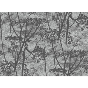 Cole & Son - Icons - Cow Parsley 112/8026