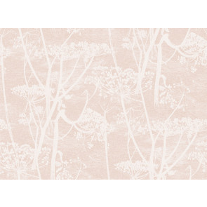 Cole & Son - Icons - Cow Parsley 112/8028
