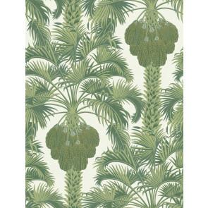 Cole & Son - Martyn Lawrence Bullard - Hollywood Palm 113/1004