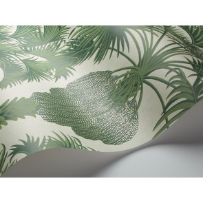 Cole & Son - Martyn Lawrence Bullard - Hollywood Palm 113/1004