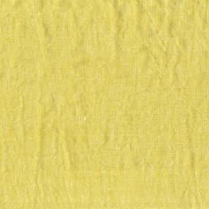 Dominique Kieffer - Tendre G.L. - Anis 17201-002