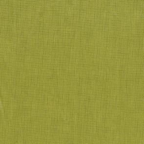 Dominique Kieffer - Lin Glacé - Chartreuse 17207-009