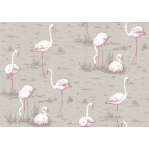 Cole & Son - New Contemporary I - Flamingos 66/6042