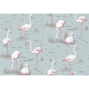 Cole & Son - New Contemporary I - Flamingos 66/6044