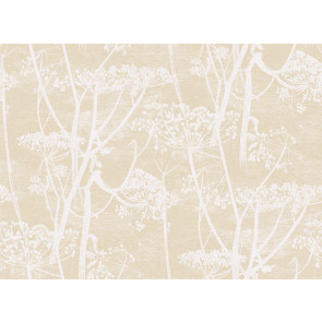 Cole & Son - New Contemporary I - Cow Parsley 66/7049