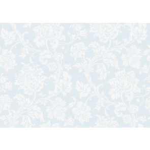 Cole & Son - Collection of Flowers - Eastern Rose 81/10041