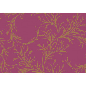 Cole & Son - Collection of Flowers - Cornelia 81/12052