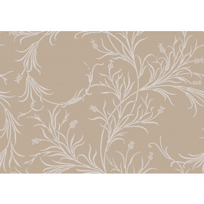 Cole & Son - Collection of Flowers - Cornelia 81/12054