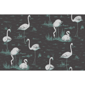 Cole & Son - Contemporary Restyled - Flamingos 95/8048