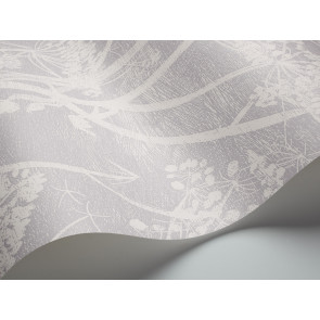 Cole & Son - Contemporary Restyled - Cow Parsley 95/9049