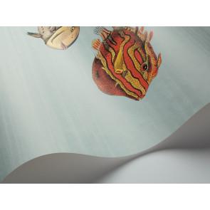 Cole & Son - Fornasetti II - Acquario 97/10030