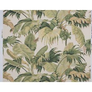Boussac - Bananier - W4630A01A01 Ecru Green