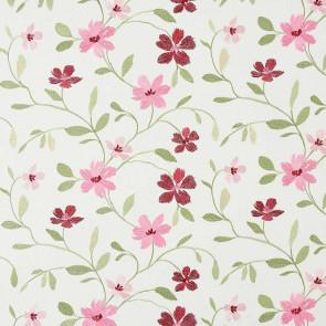 Camengo - Flowering - 33160235 Rose