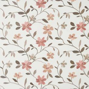 Camengo - Flowering - 33160541 Corail