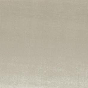 Camengo - Erato - 35530508 Nuage