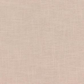 Camengo - Almora Plain - 36641240 Coquille