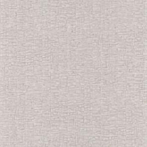 Casamance - Malanga - Caiman - 74070120 Praline