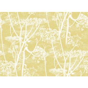 Cole & Son - Cow Parsley Linen - F111/5020