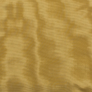 Dedar - Amoir Libre - Gold D40025