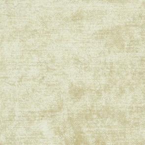 Designers Guild - Appia - Champagne - F1743-02