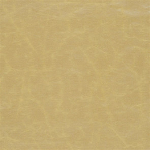 Designers Guild - Arizona - Gold - F1935-07