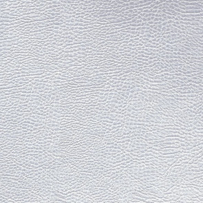 Designers Guild - Atacama - Silver - FDG2168-01