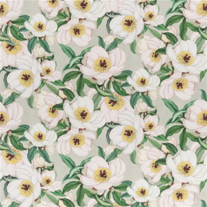 Designers Guild - Paeonia Albiflora - FJD6004/01 Celadon