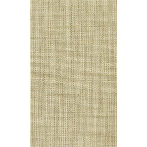 Osborne & Little - Papilio Plain 2 F5760-05