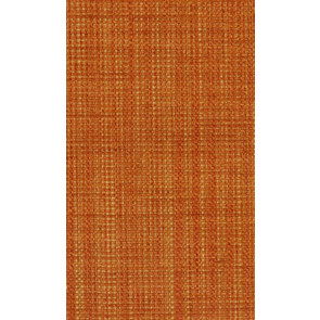 Osborne & Little - Papilio Plain 2 F5760-12