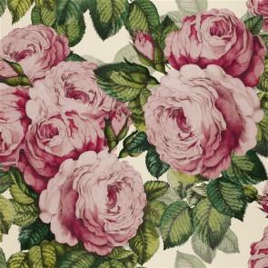 John Derian - The Rose - PJD6002/02 Tuberose