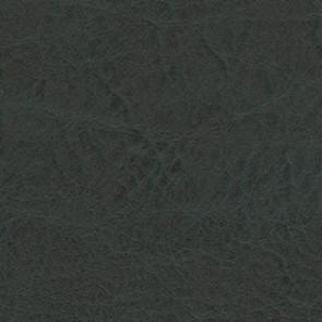 Élitis - Cuirs et peaux - La couleur de la nuit LW 303 72