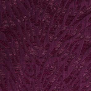 Nobilis - A Propos - Ecume 10250-95