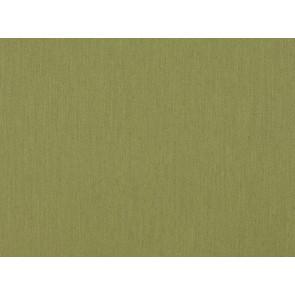 Romo - Arden - Cactus 7452/12