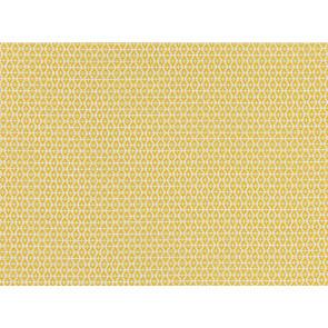 Romo - Ituri - 7888/04 Maize